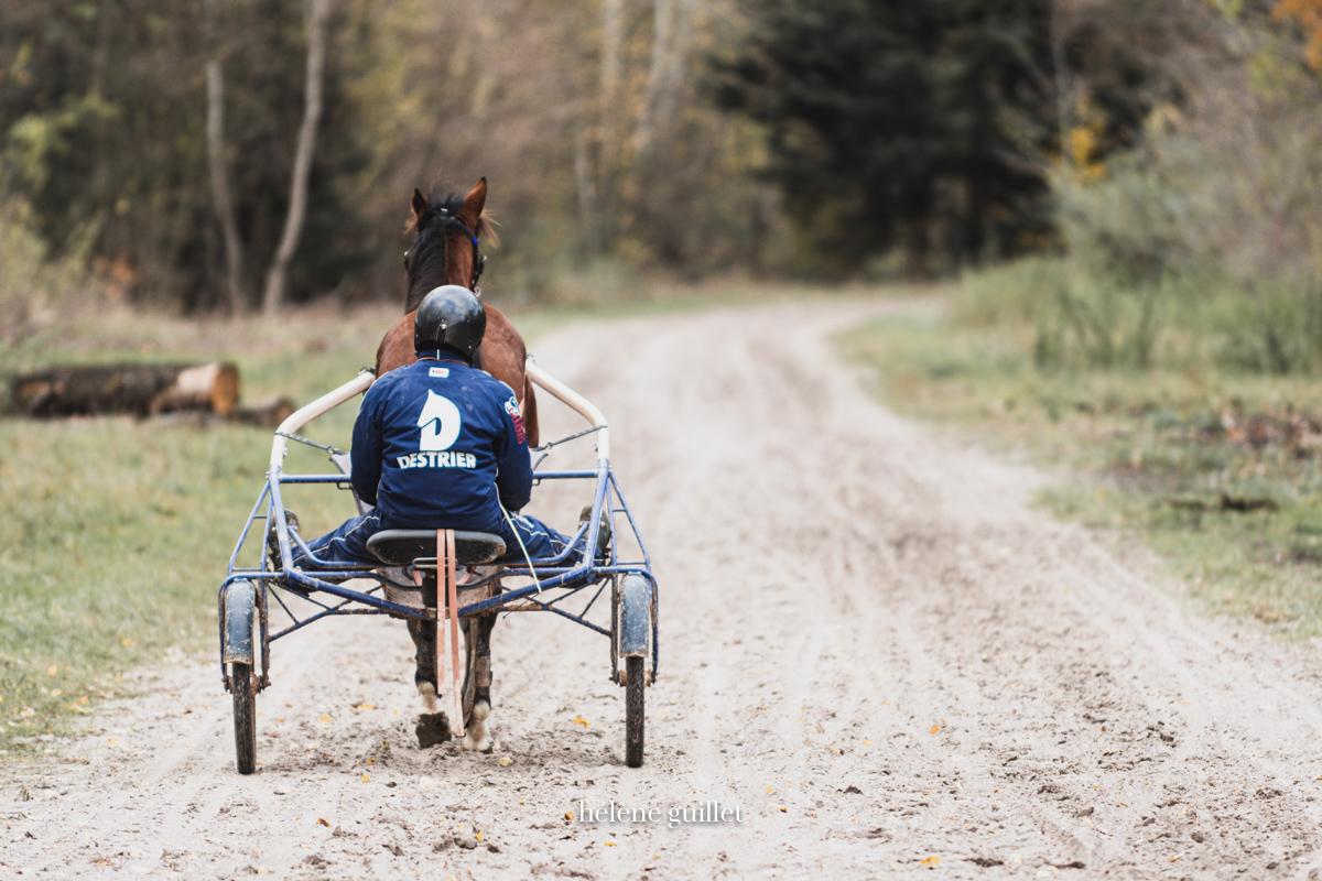 Photo entrainement Driver Destrier piste Grosbois