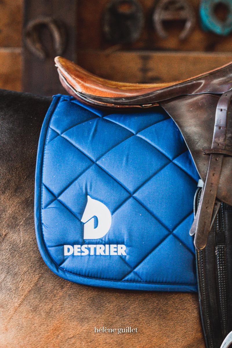 Photo tapis Destrier selle de cheval