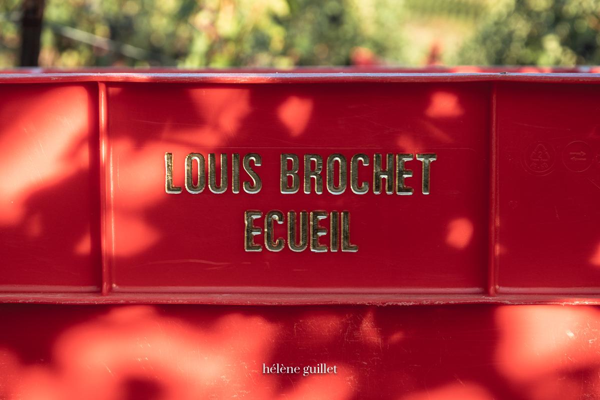 Caisse vendange Champagne Louis Brochet