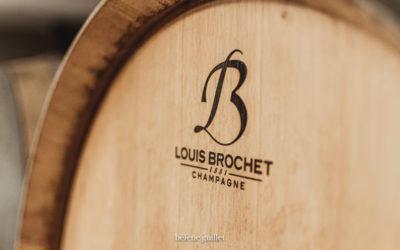 Reportage vendange Champagne Louis Brochet