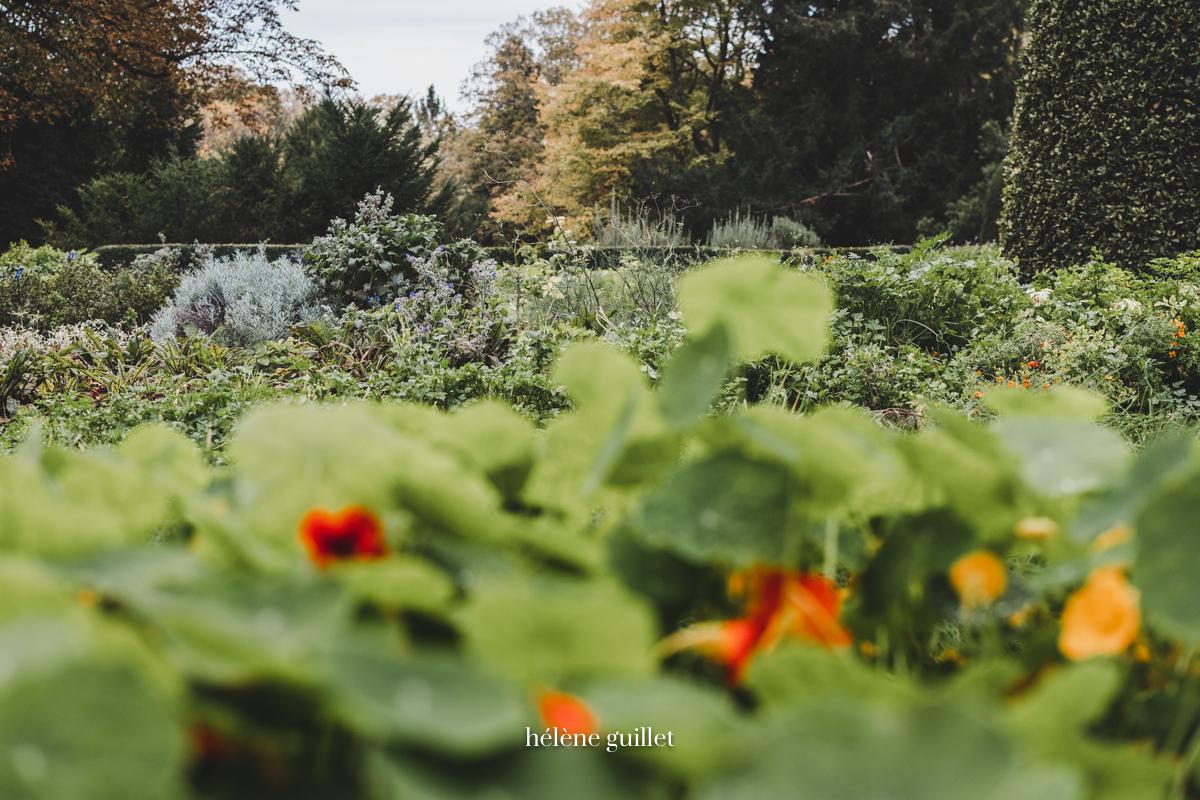Photographie Jardin Domaine Les Crayères Reims Helene Guillet Photographe